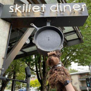 Skillet entrance